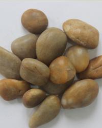 Sarı 1- 3 cm